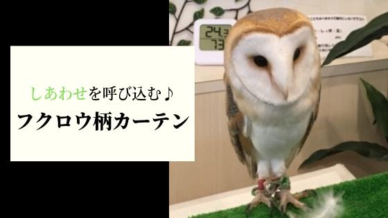 Curtain owl