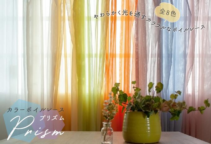 カラーレースカーテン プリズム