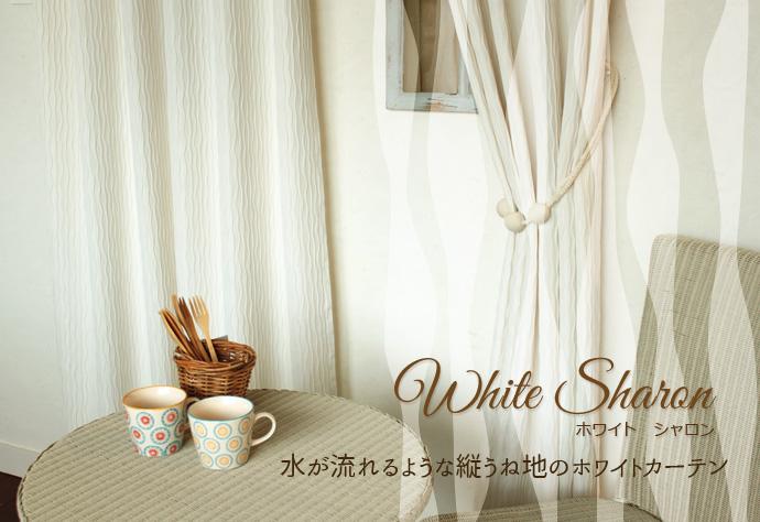 ホワイトエイミ(W)