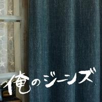 ジーンズ風カーテン